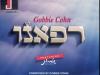 Gobbie-Cohn-Refaeinu-870x795_c